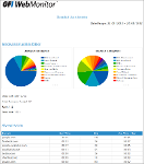 Detailed User Activity Report